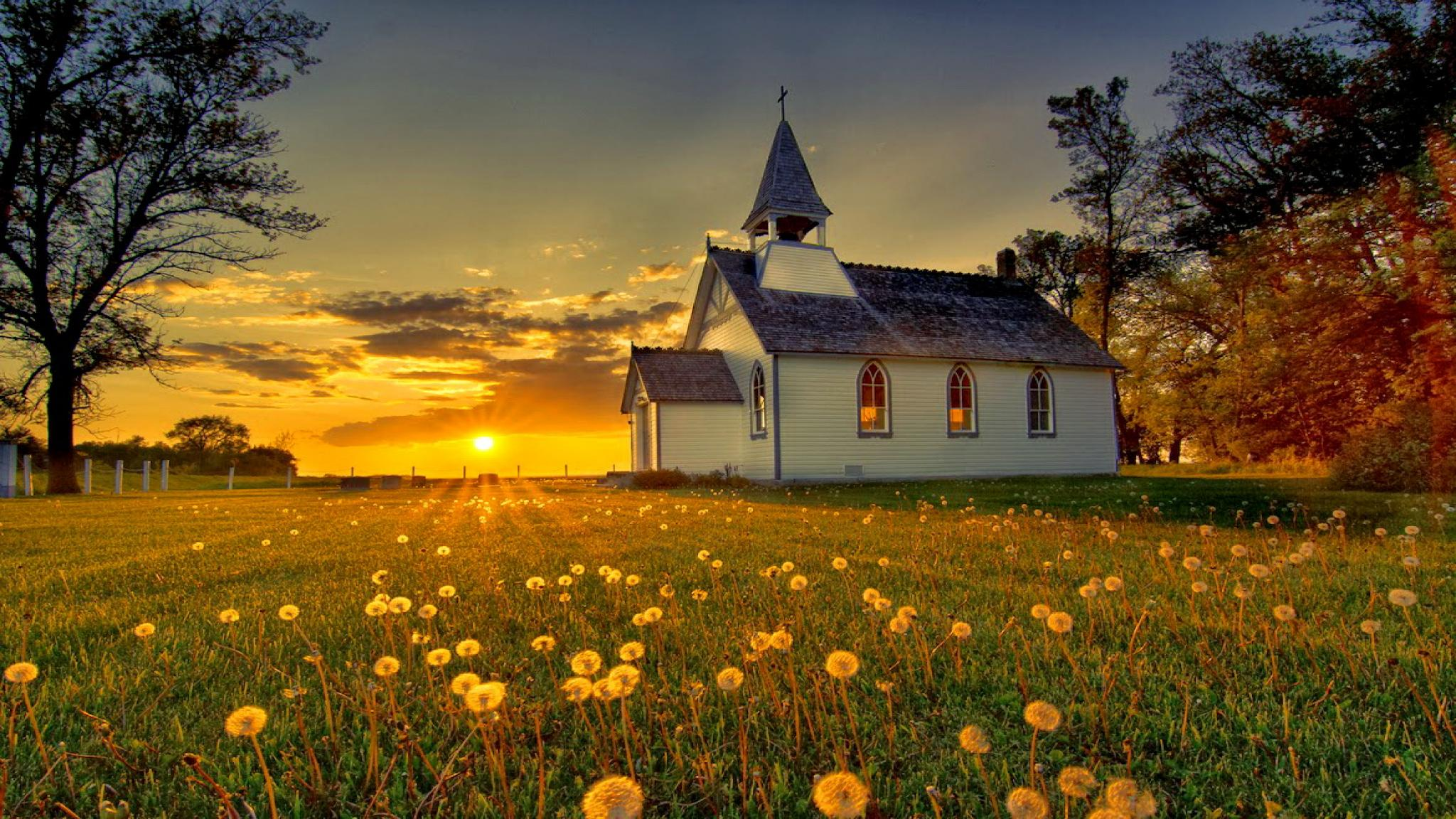 church with dandelions